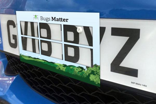 FREE Bugs Matter Kit